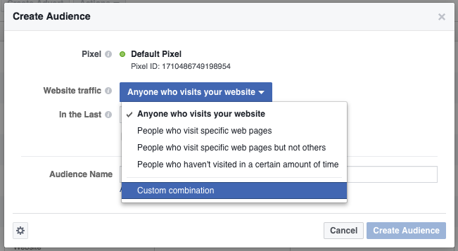 Screen Shot showing how to create a custom facebook audience with Nudge