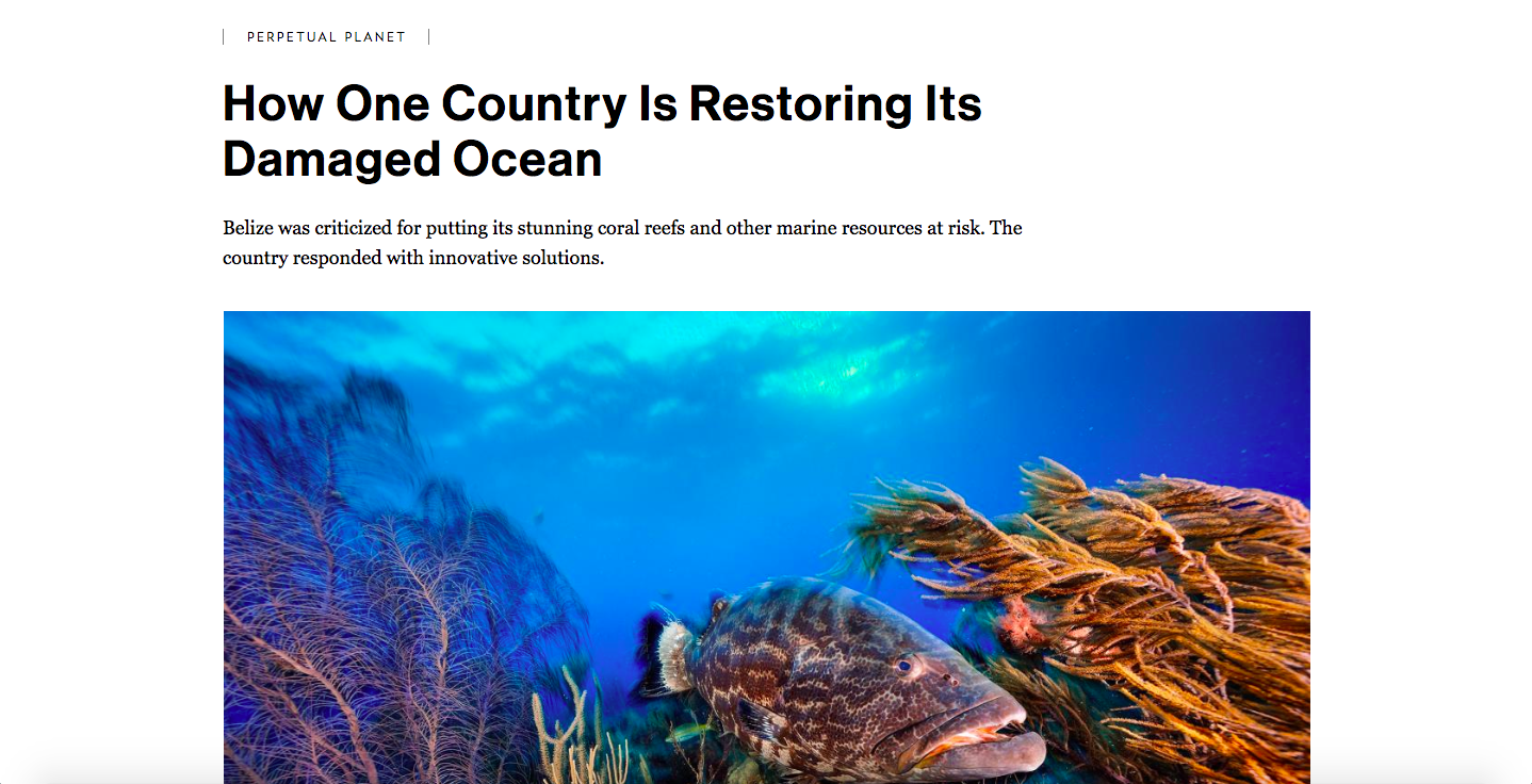 Rolex + National Geographic, How One Country Is Restoring Its Damaged Ocean
