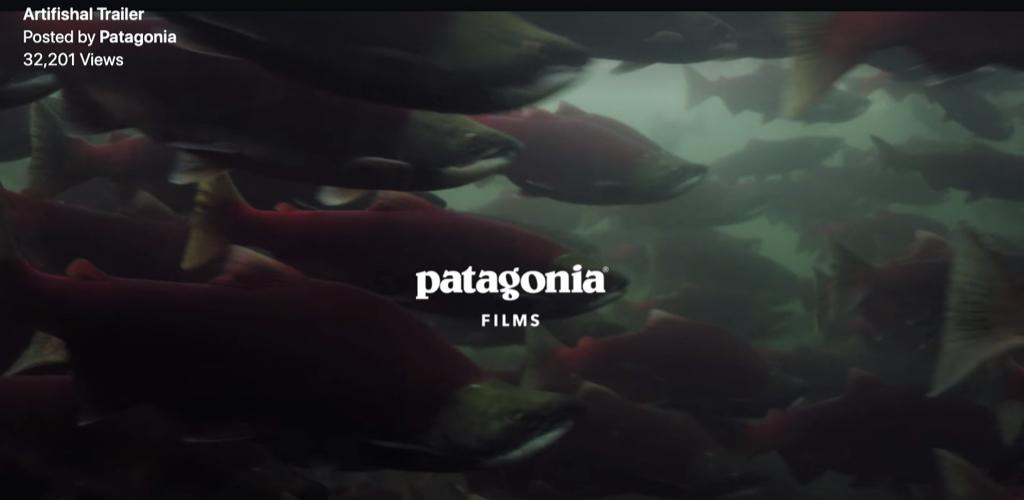 Patagonia's new film Artifishal