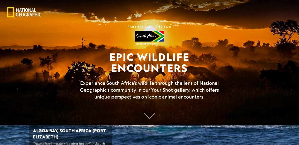 South Africa-nationalgeographic.com-branded-native-content-9675